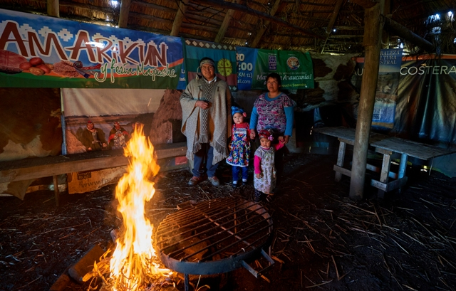 Comienzan jornadas virtuales de co diseño para sello de turismo índigena en nuestro país - Red Informativa Villarrica